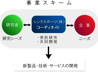 scheme_colorcoordinate